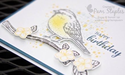 CARD:  Best Birds Happy Birthday and CYCI#130
