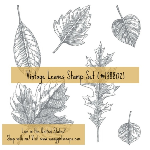 Vintage Leaves Stamp Set 138802 featured by Pam Staples. Order yours today by visiting my blog: www.sunnygirlscraps.com #vintageleaves #sunnygirlscraps #stampinup #fall #cards