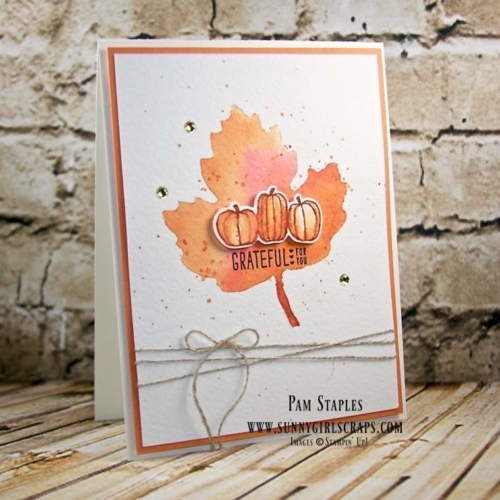 Oh My Pumpkin and Pie OSAT Blog Hop featuring a watercolor technique with Liquid Frisket created by Pam Staples. To order the supplies for this card or any of the projects I create, visit my blog at www.sunnygirlscraps.com for more information. #pumpkinpie #liquidfrisket #stampinup #pamstaples #osat #fall #pumpkin