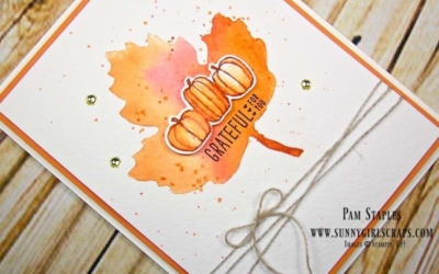 Oh My Pumpkins and Pie for OSAT Blog Hop