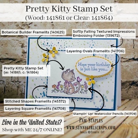A Sweet Pretty Kitty Happy Birthday Card created by Pam Staples, Sunny Girl Scraps. Card features the Pretty Kitty Stamp Set and Embossing Folder Stamp Technique. Place your Stampin' Up! order by visiting my blog: www.sunnygirlscraps.com #prettykitty #sunnygirlscraps #stampinup #cards