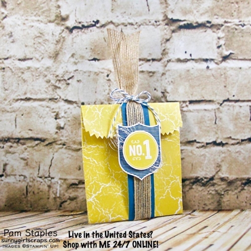 Check out the Mini Treat Bag paired with the Color Theory Designer Series Paper Stack created for the All About Men OSAT Blog Hop - June 2017. Project created by Pam Staples, SunnyGirlScraps. To Learn More... Go to www.sunnygirlscraps.com #minitreatbag #fathersday #masculine