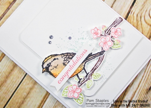 Best Birds In the Garden for SUOC176 stamped by Pam Staples. Visit www.sunnygirlscraps.com for more details. #bestbirds #inthegarden #stampinup