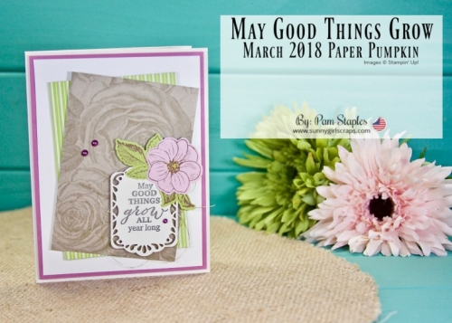 Welcome to A Paper Pumpkin Thing Blog Hop featuring the March 2018 Paper Pumpkin with Alternative Projects. I've created a simple card that still has a vintage feel to it. Most of the materials are from the kit except for the card base and card front. #paperpumpkin #alternativepaperpumpkin