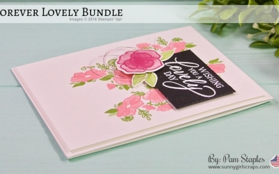 TCC106 Pink Party with Forever Lovely Bundle