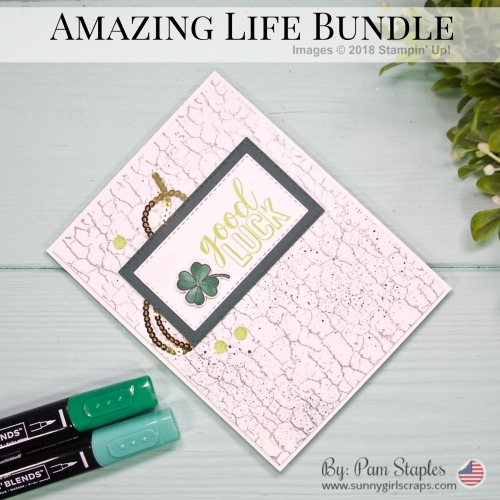 Amazing Life Bundle
